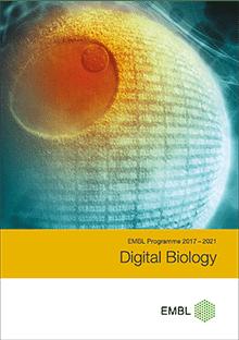 EMBL Programme