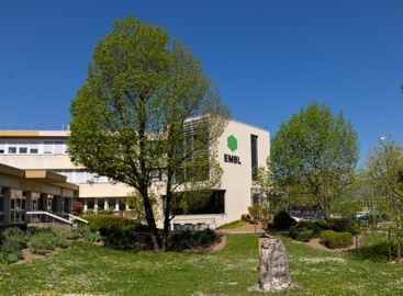 EMBL Grenoble building