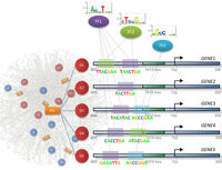 scientific visualisation
